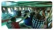کشتی تفریحی آکواریوم طوطیا