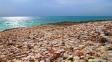 تور جزیره هندورابی