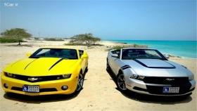 رفع مشکلات تعویض پلاک خودروهای کیش