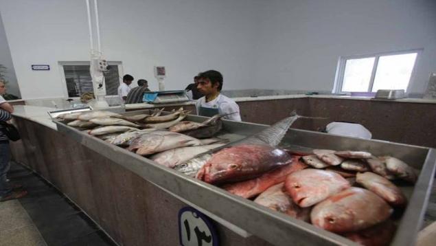بازار ماهی فروش ها
