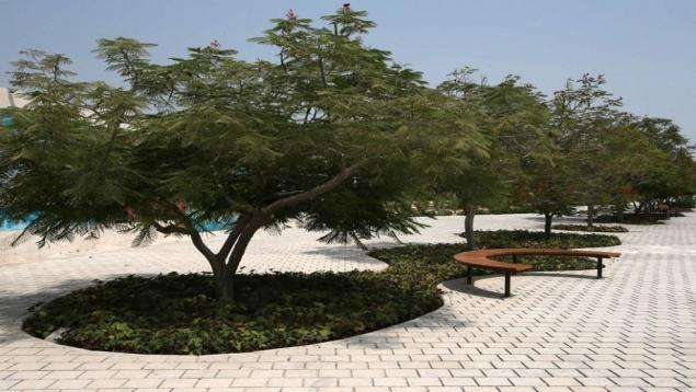 باغ راه ایرانی
