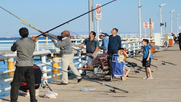 ماهیگیری تفریحی