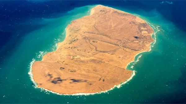 جابجایی هزاران قطعه مرجان در هندورابی کاری بی نظیر درکشور بود