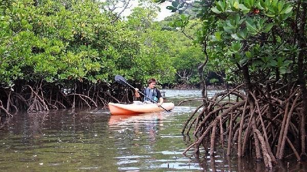 کایاک سواری در جزیره ایریوموت