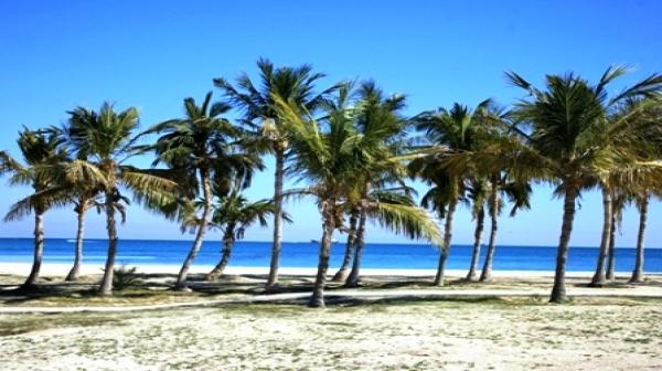 آشنایی با ساحل درختان نارگیل جزیره کیش