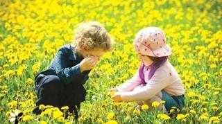 برگزاری همایش کودک و طبیعت در کیش