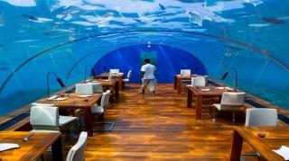 تجربه ای باورنکردنی در رستوران ایتا